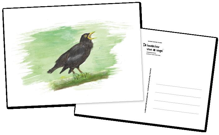 De boodschap van de volgel Postkaartenset versie2